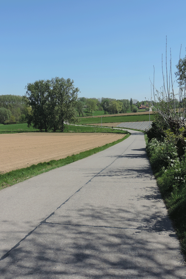 Omgeving Vlaamse Ardennen